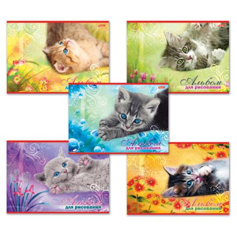 """Альбом для рисования, 20 л., HATBER, обложка мелованный картон, 100 г/м<sup>2</sup>, """"Котята"""" (5 видов), 20А4В, A17357"""