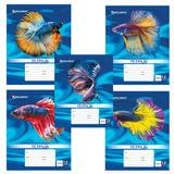 """Тетрадь 12 листов, клетка, обложка мелованный картон, блок офсет белый, """"Magic Fish"""", BRAUBERG, 104768"""