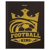 """Дневник 5-11 класс 48 л., твердый, BRAUBERG, фольга, с подсказом, """"Король спорта"""", 106076"""