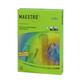 Бумага MAESTRO color А3, 80 г/м<sup>2</sup>, 500 л., интенсивная зеленая MA42