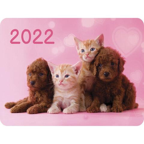 Календарь карманный на 2022 год, 70х100 мм,