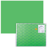 Бумага (картон) CANSON &quot;Iris Vivaldi&quot;, А2+, 500х650 мм, 240 г/м<sup>2</sup>, 2-сторонняя, зеленая, 29