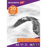 """Папка для рисования А4, 20 л., 160 г/м<sup>2</sup>, BRAUBERG, 210х297 мм, """"Орел"""", 125230"""