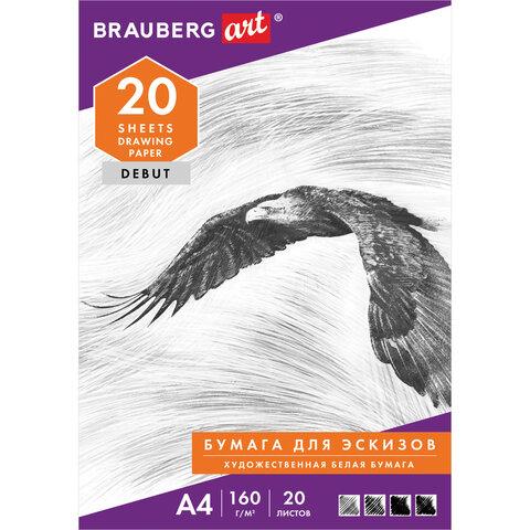 Папка для рисования А4, 20 л., 160 г/м2, BRAUBERG, 210х297 мм,