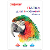 """Папка для рисования, А4, 40 л., 120 г/м<sup>2</sup>, ПИФАГОР, 210х297 мм, """"Попугай"""", 129222"""