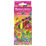 """Фломастеры BRAUBERG """"Blooming flowers"""", 6 цветов, вентилируемый колпачок, картонная упаковка с фольгой, 150559"""