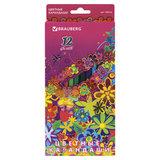 "Карандаши цветные BRAUBERG ""Blooming flowers"", 12 цветов, заточенные, картонная упаковка, 180536"