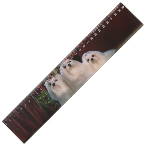 """Линейка 3D, 30 см, BRAUBERG, объемная, """"Собаки"""", европодвес, 210588"""