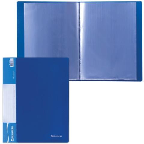 Папка 10 вкладышей BRAUBERG (БРАУБЕРГ) стандарт, синяя, 0,5 мм, 221591