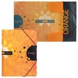 """Папка на резинках HATBER HD, А4, """"iFRESH-апельсин"""", до 300 листов, 0,7 мм, Пк4р 11263, V134016"""