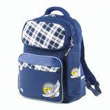 Рюкзак BRAUBERG с пеналом в комплекте, эрго-спинка, для мальчиков, Орел, 42х29х14 см