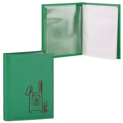 """Бумажник водителя FABULA """"Friends"""", натуральная кожа, тиснение, 6 пластиковых карманов, лайм, BV.56.CH"""