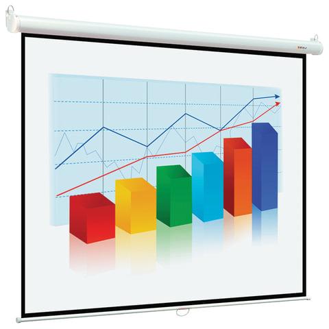 Экран проекционный DIGIS OPTIMAL-B, матовый, настенный, 150х200см, 4:3, DSOB-4303