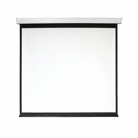 Экран проекционный настенный 135