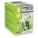 Фотобумага для струйной печати 10x15 см, 230 г/м<sup>2</sup>, 500 листов, односторон. глянцевая, CACTUS CS-GA6230500