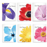 Фотоальбом BRAUBERG на 36 фото 10х15 см, мягкая обложка, цветы, ассорти, 390654
