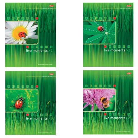 """Тетрадь 96 л., HATBER, спираль, клетка, мелованный картон обложка, """"Живые моменты"""", Т06993"""