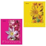 """Тетрадь 48 л. BRAUBERG ЭКО, клетка, обложка мелованный картон, """"Цветы"""", 4 вида, 401283"""