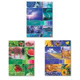 """Тетрадь А4, 96 л., HATBER, скоба, клетка, обложка картон, """"Разноцветный мир"""" (3 вида), 96Т4В3"""