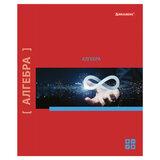 Тетрадь предметная NAVIGATOR 48 листов, выборочный лак, АЛГЕБРА, клетка, подсказ, BRAUBERG, 403538