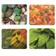 Коврик для мыши DEFENDER Sticker, полипропилен+защитная пленка, 220x180x0,4мм, 8 видов, 50405