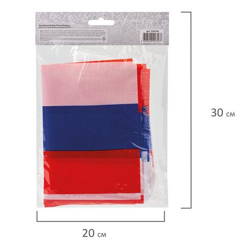 Гирлянда из флагов России, длина 5 м, 10 прямоугольных флажков 20х30 см, BRAUBERG, 550185, RU25