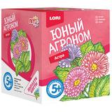 """Набор для выращивания растений ЮНЫЙ АГРОНОМ """"Астра"""", горшок, грунт, семена, LORI, Р-001"""