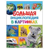 Большая энциклопедия в картинках, Котятова Н.И., 27861