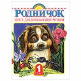 Родничок. Книга для внеклассного чтения. 1 класс, 708656