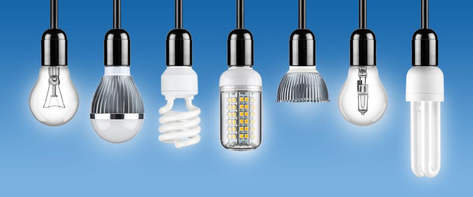 bulb-img1.jpg